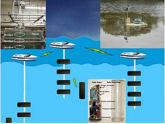 Center for Embedded Networked Sensing (CENS) Using Cyclops Fluorometer in Monitoring of Algal Blooms
