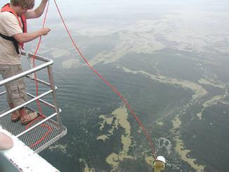 Detecting Filamentous Cyanobacteria Blooms in the Baltic Sea