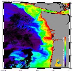 Coastal Ocean Projects Program/River Influences on Shelf Ecosystems