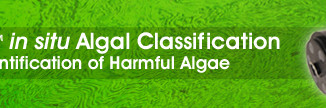 PhytoFind in situ Algal Classification Simplifies Identification of Harmful Algae
