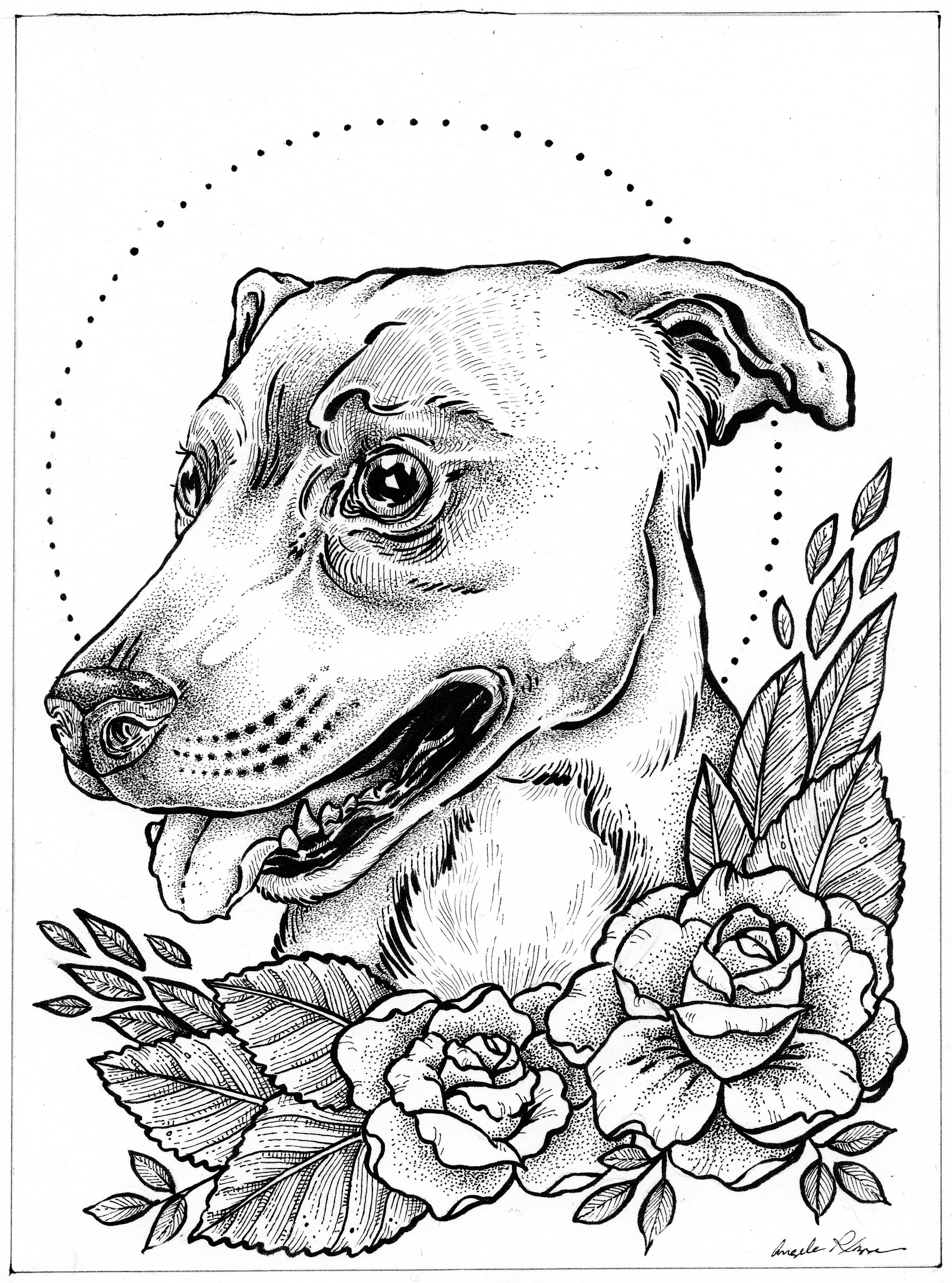 pitbull portrait copy