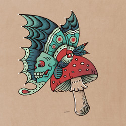 moth decay