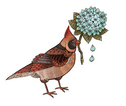 cardinal tat