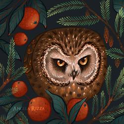 Rockefeller Christmas Tree Owl