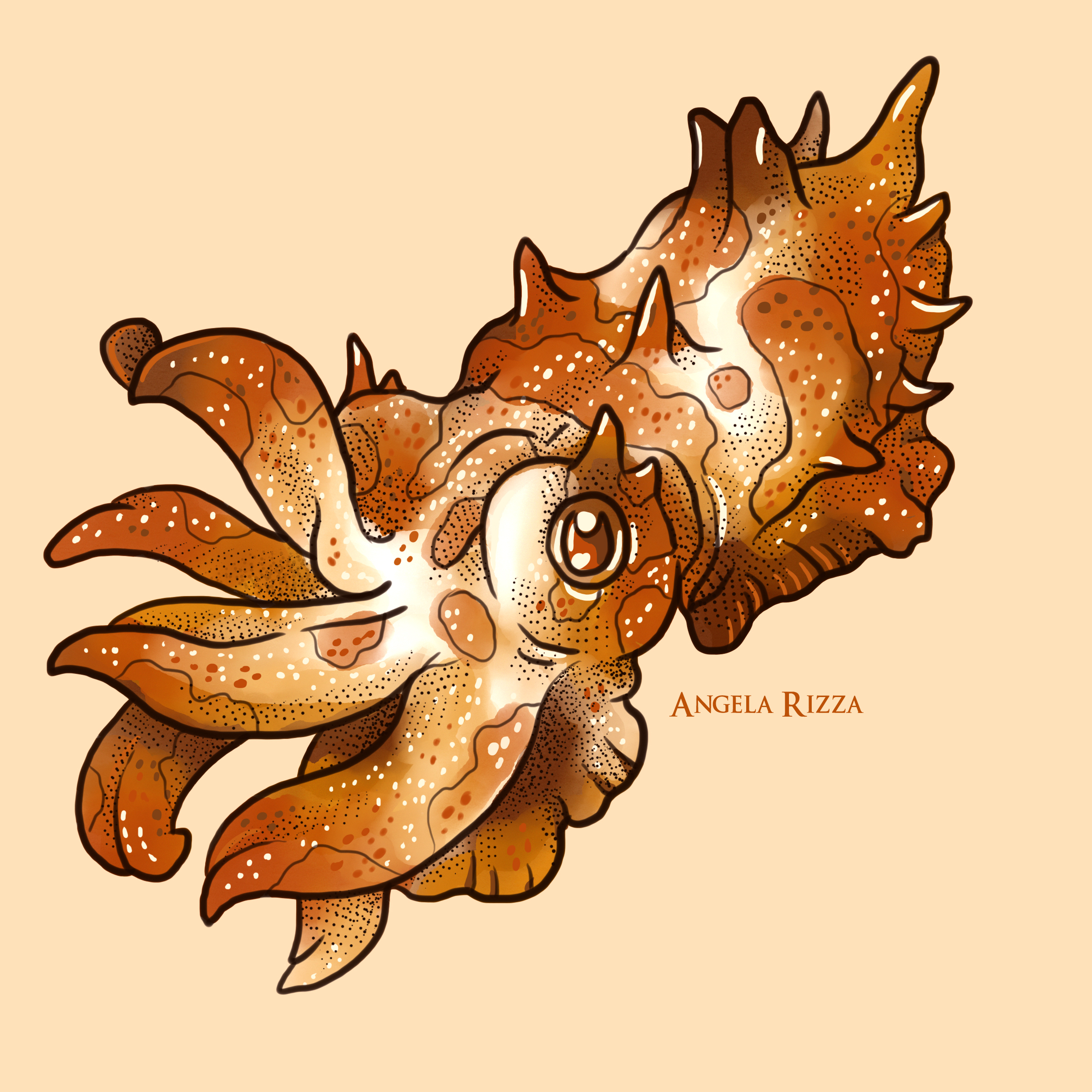 20 tentacle flamboyant Cuttlefish