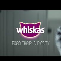 WHISKAS: FEED THEIR CURIOSITY