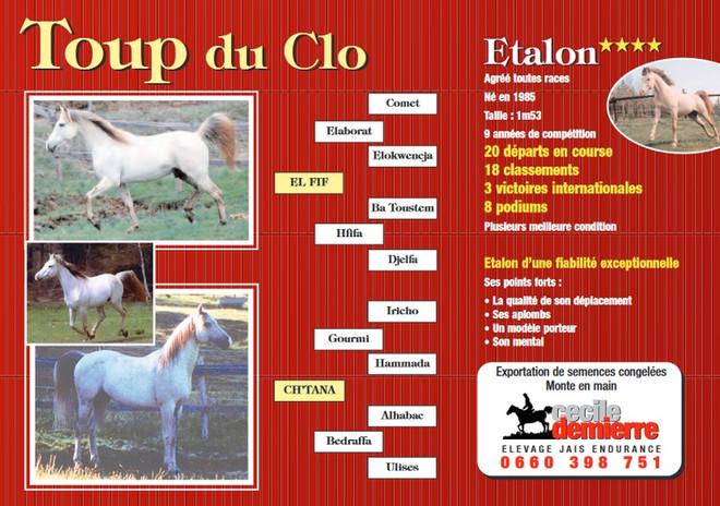 Toup du Clo
