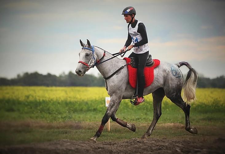 Spirit de Crouz - Samorin - Championnat du Monde 2016