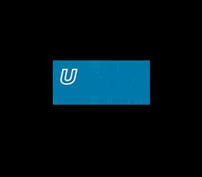 Canadian Urban Institute