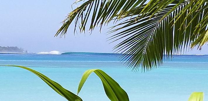 surf resort mentawais eco retreat camp