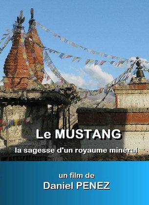 Le Mustang - La sagesse d'un royaume minéral