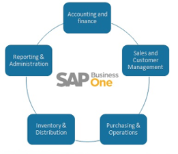 sap-business-one