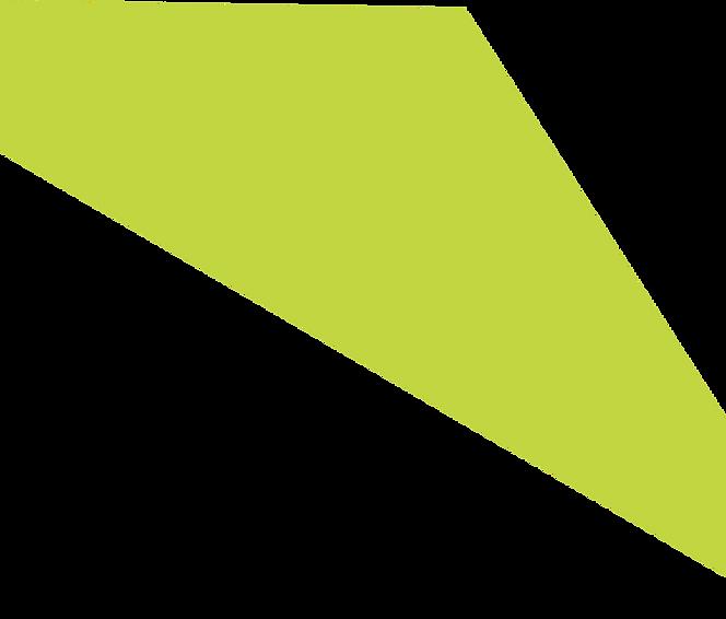 Light green 1.png