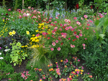 It's the summer borders this time!