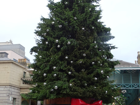But the piece de resistance: the beauty of Covent Garden with its tree