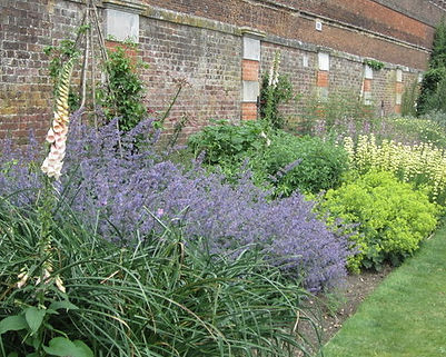 hampton_court_palace_gardens v.JPG