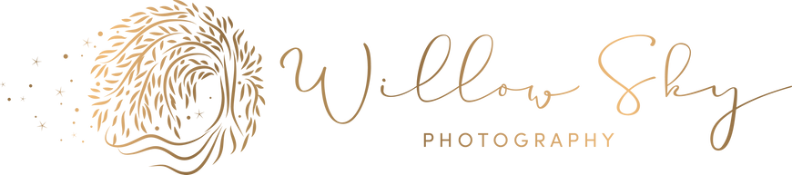 logo 02 gold.png