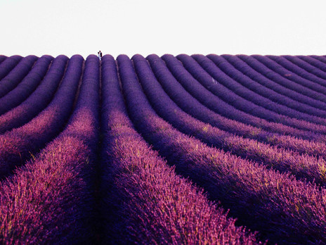 Un jour en Provence