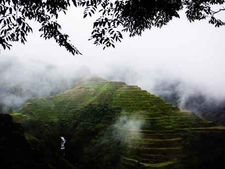 Aventure dans les rizières, Philippines,