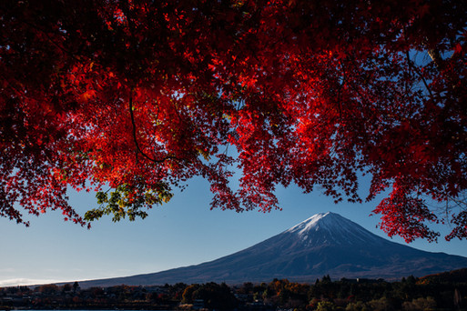 Japon 2019 - VincentAGNES-28.jpg