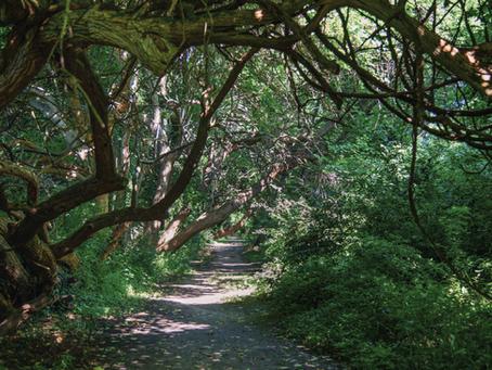 A Walk on Wye