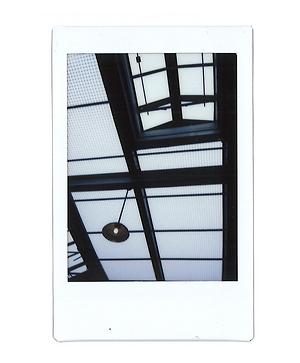 polaroids-6.png
