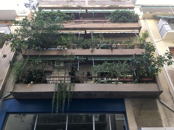 Planted Architecture_Royffe Flynn35.jpg