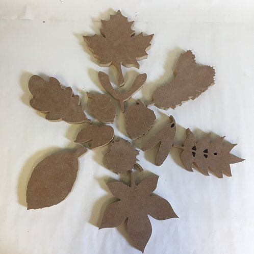 Leaves and Seeds Set