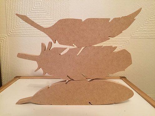 Pack of 3 Feathers