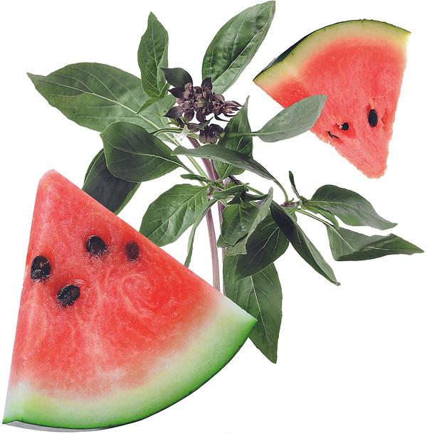 GreyGoose_Essences_Gradient_Watermelon_B