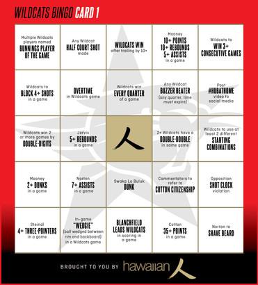 Wildcats Bingo Card 1.jpg