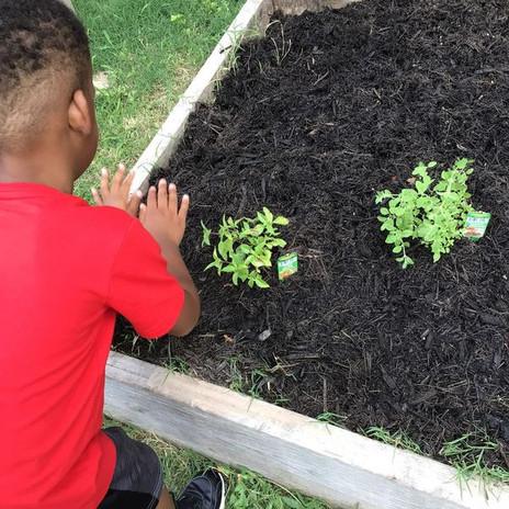 Planting Carefully