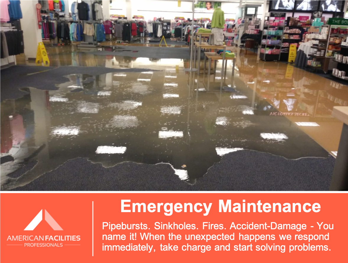 Emergency Maintenance.png