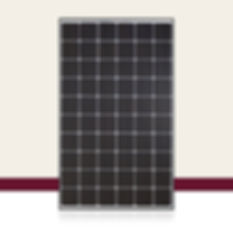 QCells 300W Solar Panel