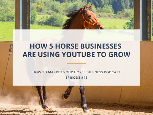 How 5 Horse Businesses Are Using YouTube to Grow Their Reach