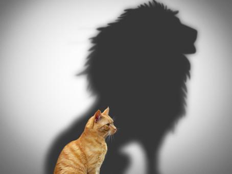 Centering Courageous Conversations