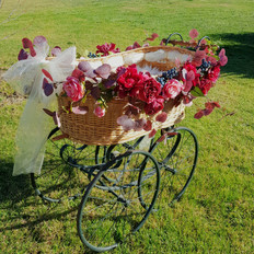 Bassinet with burgundy flowers and white chiffon.