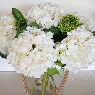 hydrangea white.jpg
