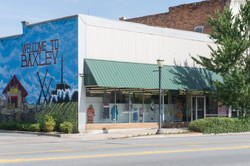 Washington_Baxley_welcomemural1