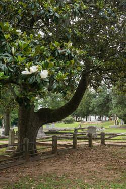 Washington_Sandersville_cemetery5