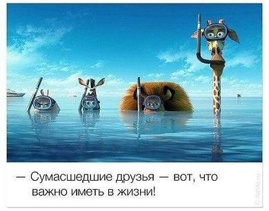 FB_IMG_1608879818546.jpg