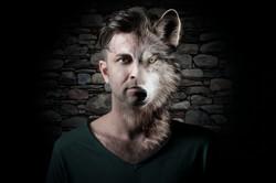 Werewolf - tomjanka.com