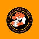 US Sainte-Maure Handball Masculin Logo