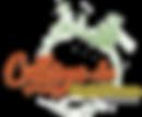 logo college sans fond.png