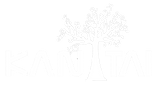 logotipo positivo.png