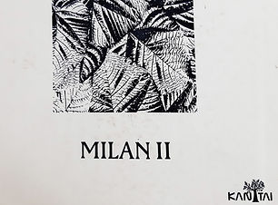 Milan II.jpg