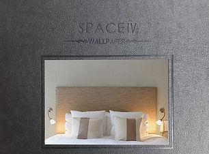space 4.jpg