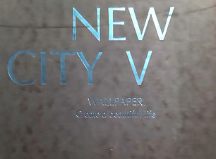 New City V.jpg