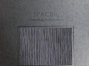 space 2.jpg