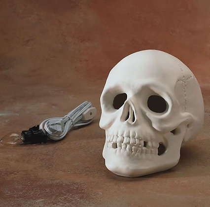 Skull w/Light Kit